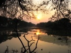Our favourite places in India – Bharatpur